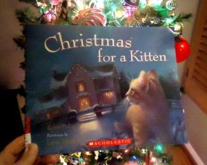 Christmas for Kitten